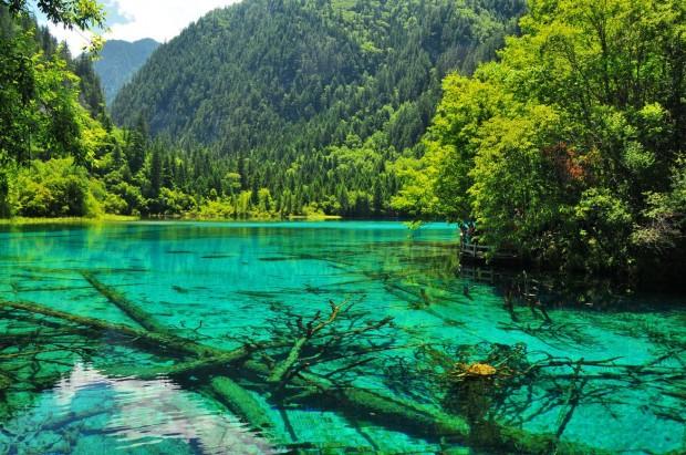 Le lac des cinq fleurs - chine