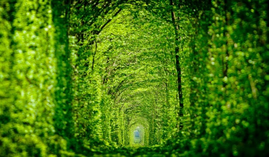 Tunnel de l'amour Klevan Ukraine