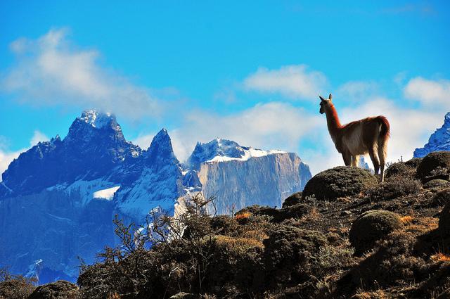 Parc Torres del Paine chili