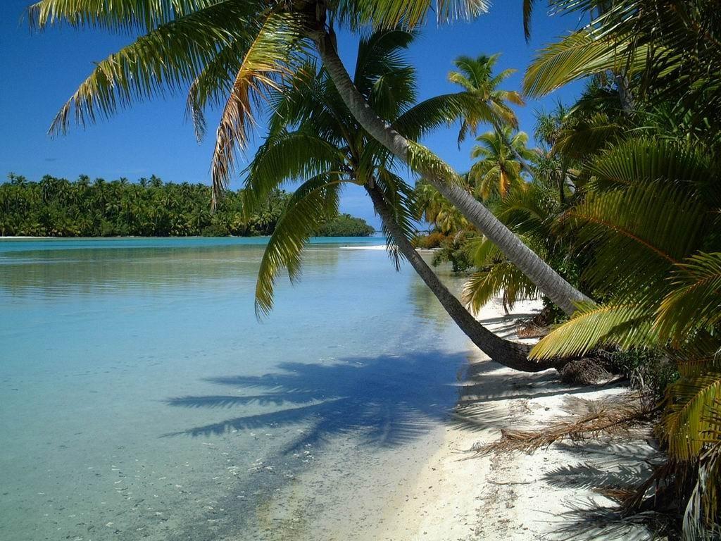 Aitutaki ile paradisiaque