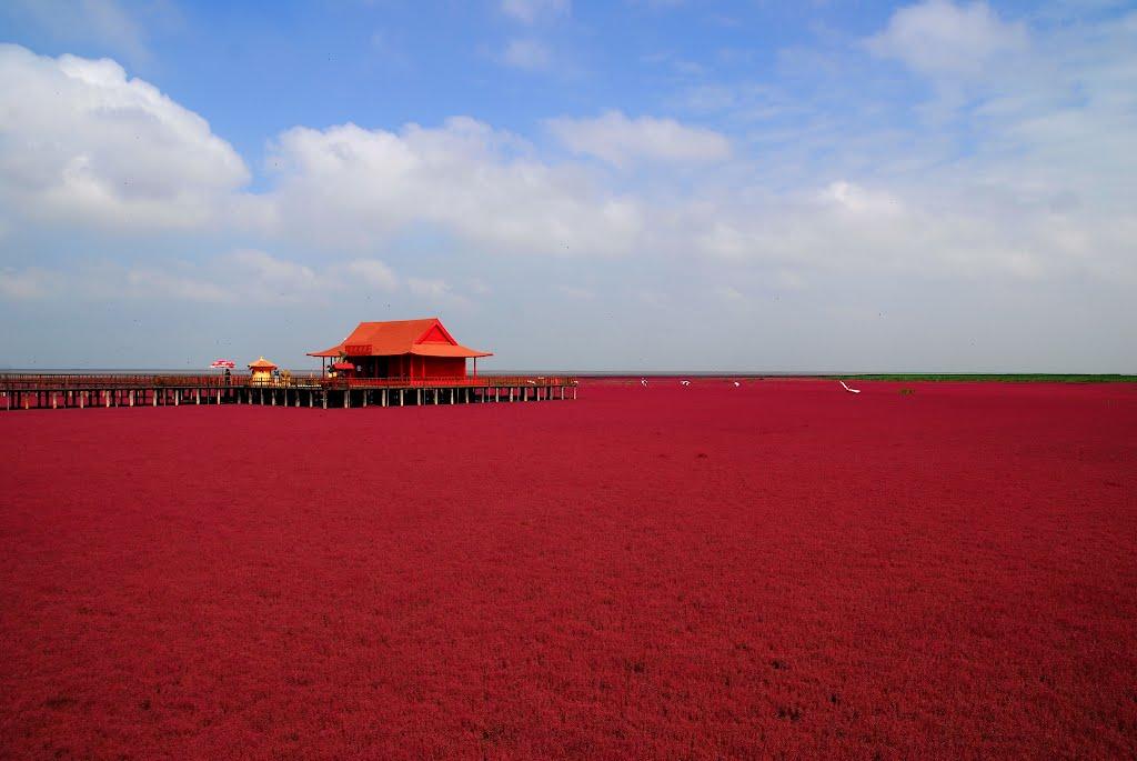 plage rouge paysage magnifique