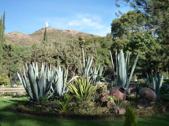 jardin botanique santa cruz de la sierra