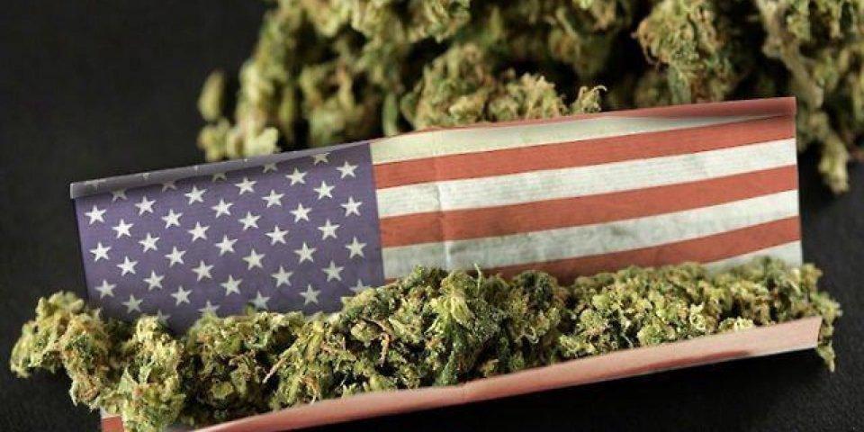 cannabis legal usa