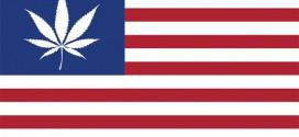 La légalisation du cannabis aux États-Unis : tout ce qu'il faut savoir